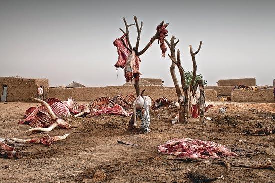 משבר המזון, ניגריה / צלם: מרקו די לאורו